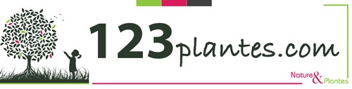 Logo du site 123plantes.com