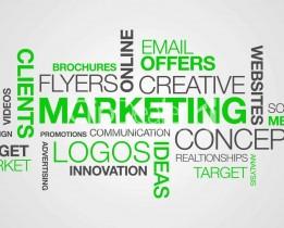 Plateforme marketing : j'apprends à fidéliser mes clients